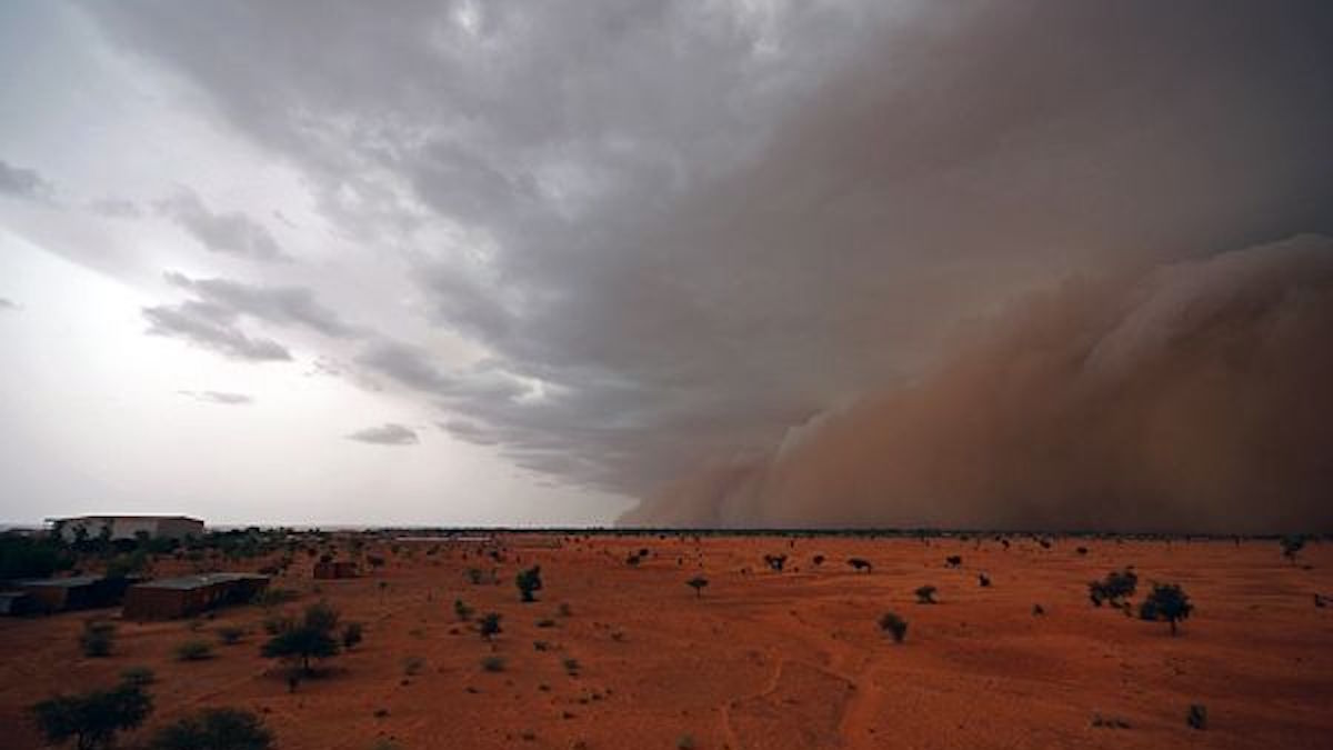 The rain is coming to the Sahel, at the beginning of the monsoon. © IRD/ Thierry Lebel